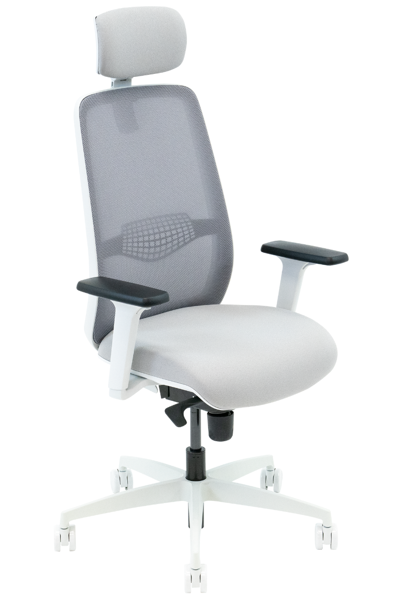 Neemo Ergonomic Chair
