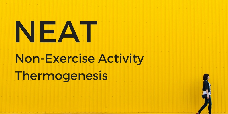 iMovR NEAT - Non Exercise Activity Thermogenesis