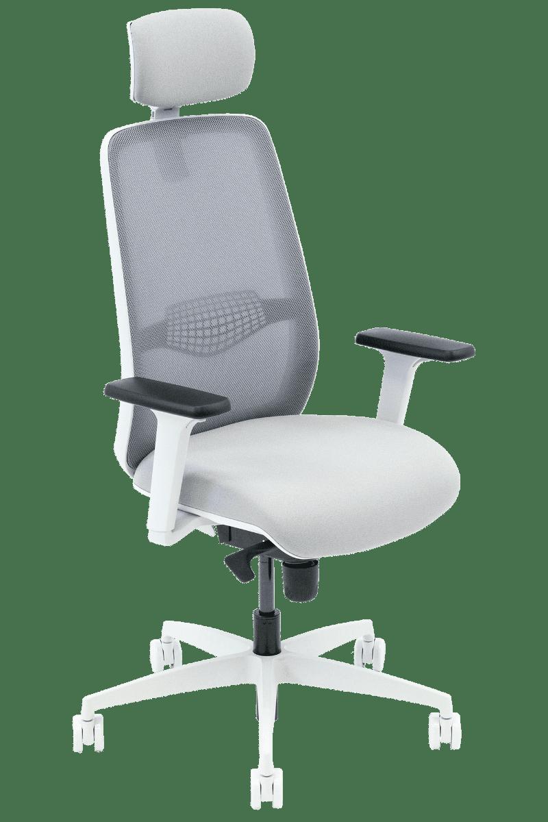 Neemo Ergonomic Chair