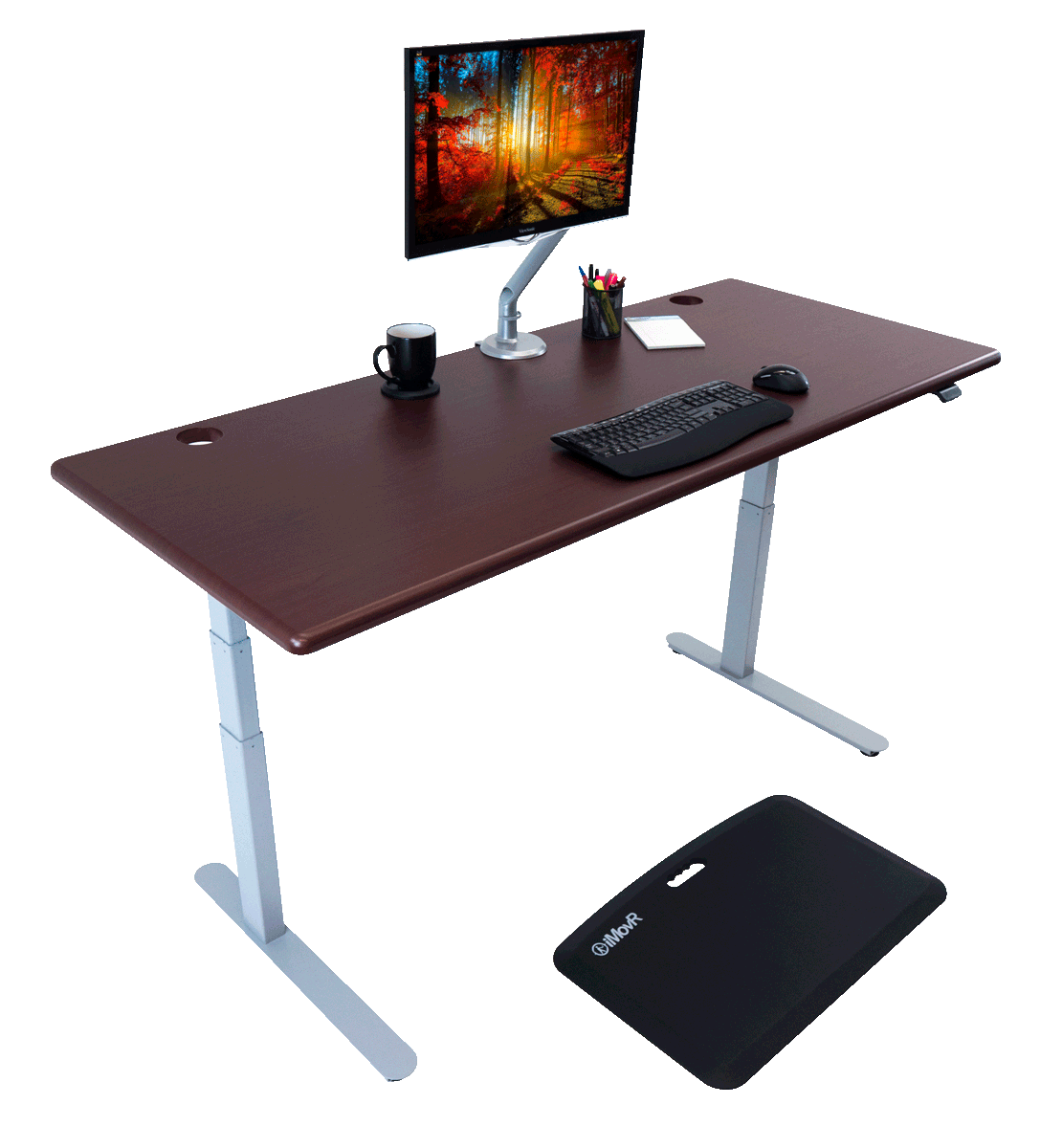 Lander Standing Desks